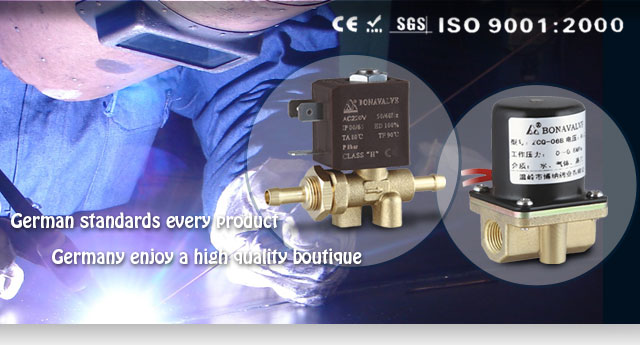 2/2 way brass solenoid valve ZCQ-20B-2 - Products - Wenling Bona